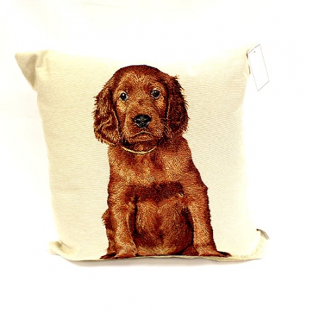 Baby Setter Filled Cushion