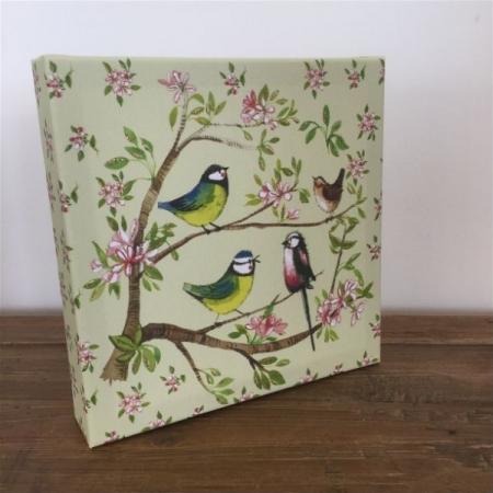 Garden Birds Canvas by Alex Clarke